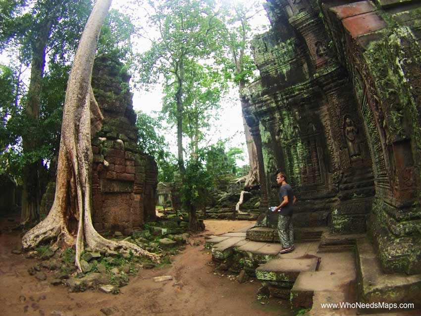 Jack at ta prohm - Angkor Wat pictures