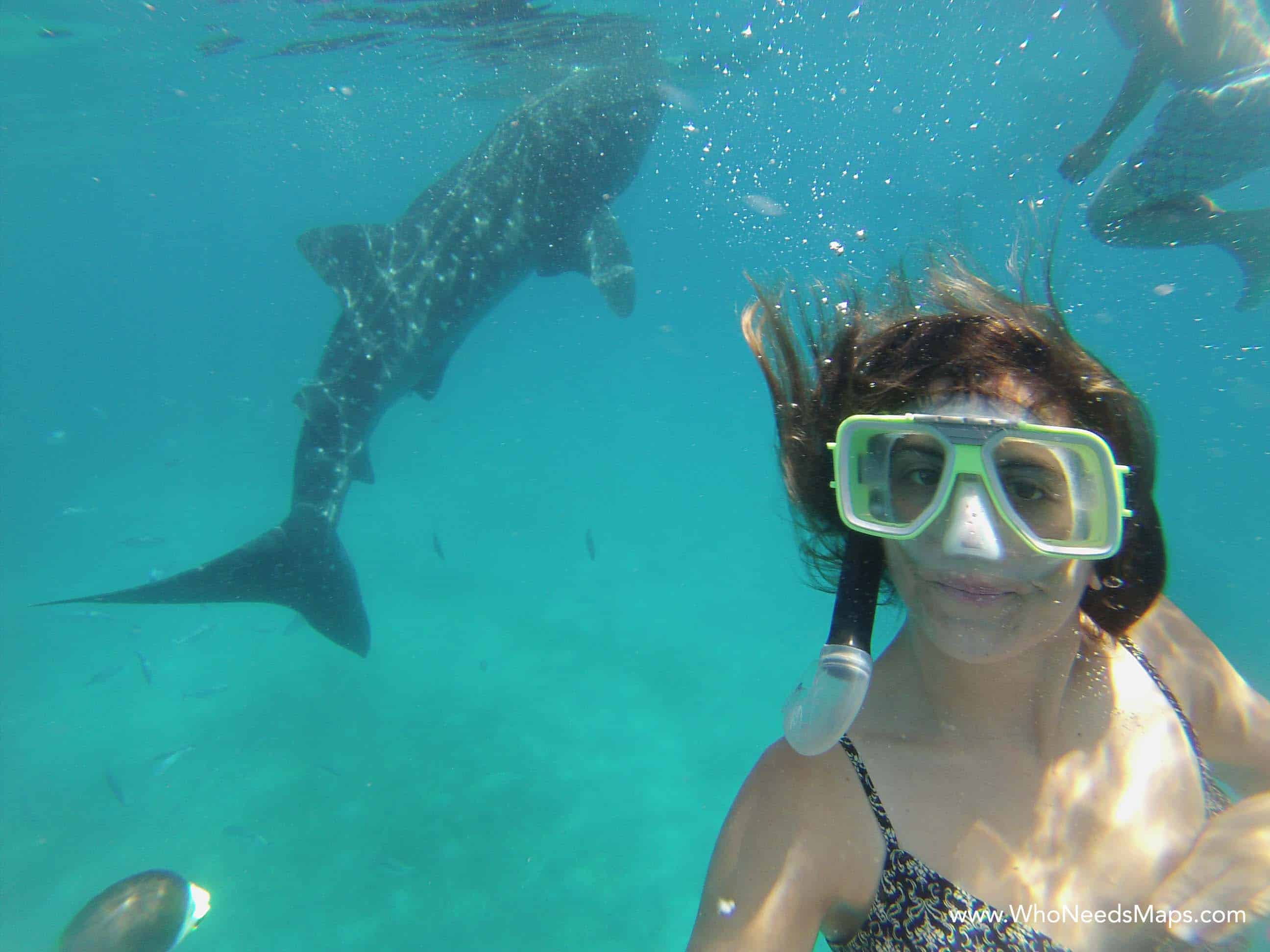 Jenn with Whale Sharks - Philippines