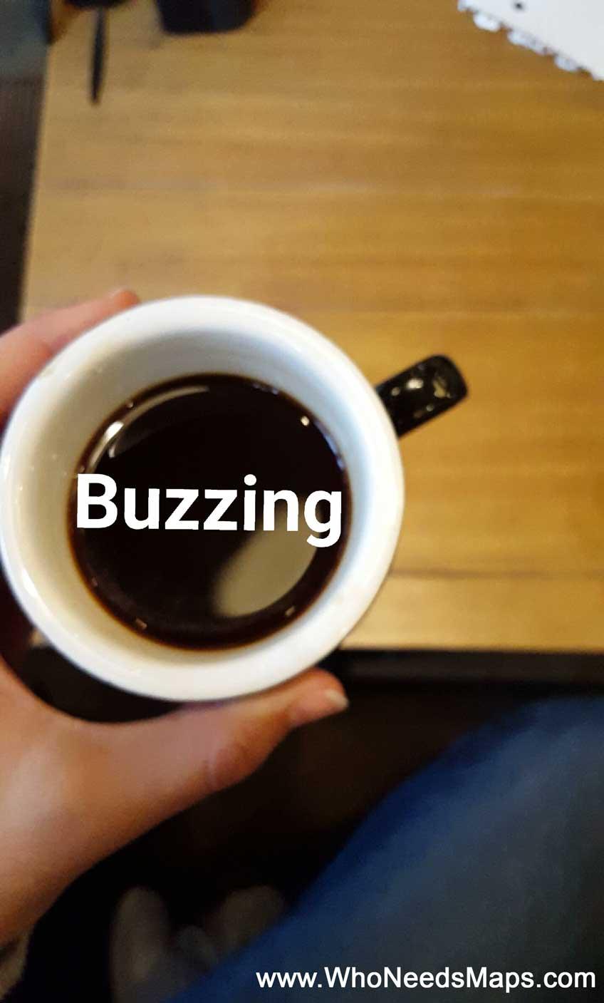 best coffee shops in seattle buzzed