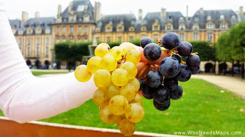 Paris Food Tour grapes-paris