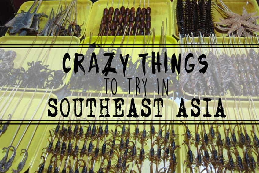 Weird exotic foods in southeast asia