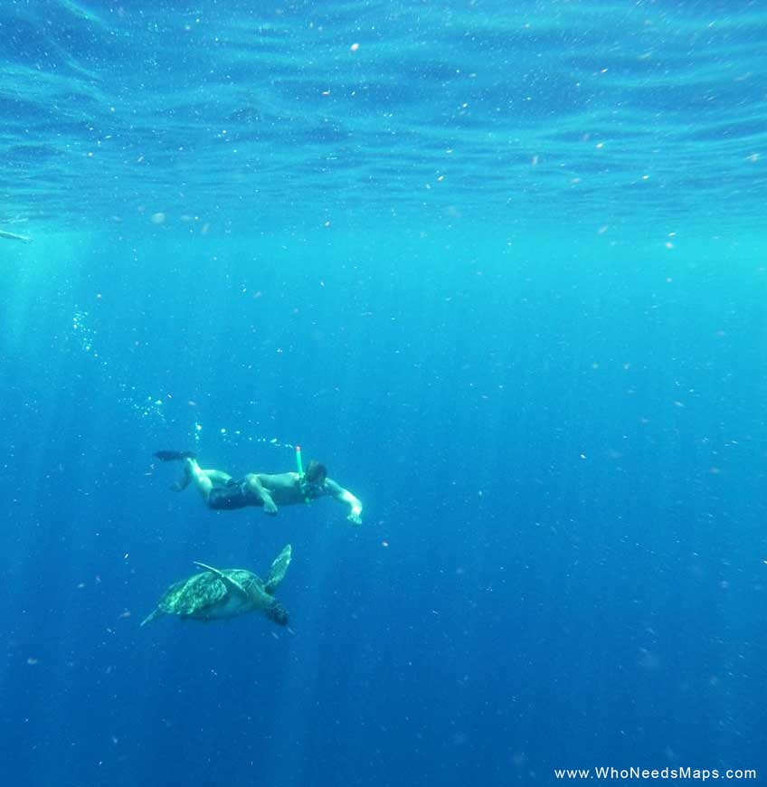 Best Places to Snorkel in Southeast Asia - gili-t