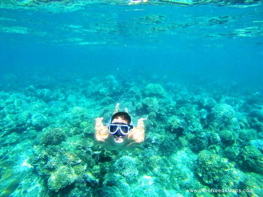 snorkeling in thailand - koh samui