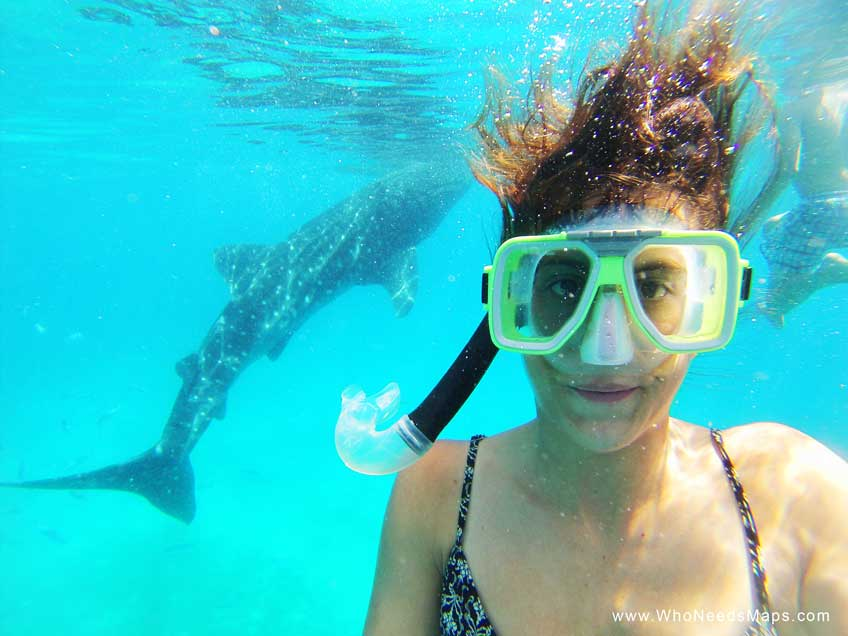 snorkeling philippines-in-oslob