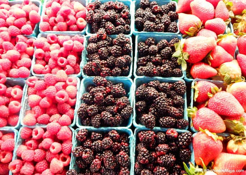 taste of seattle berries