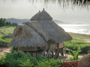 treehouse around the world mexico ariel