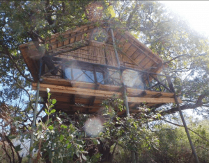 treehouse around the world south africa