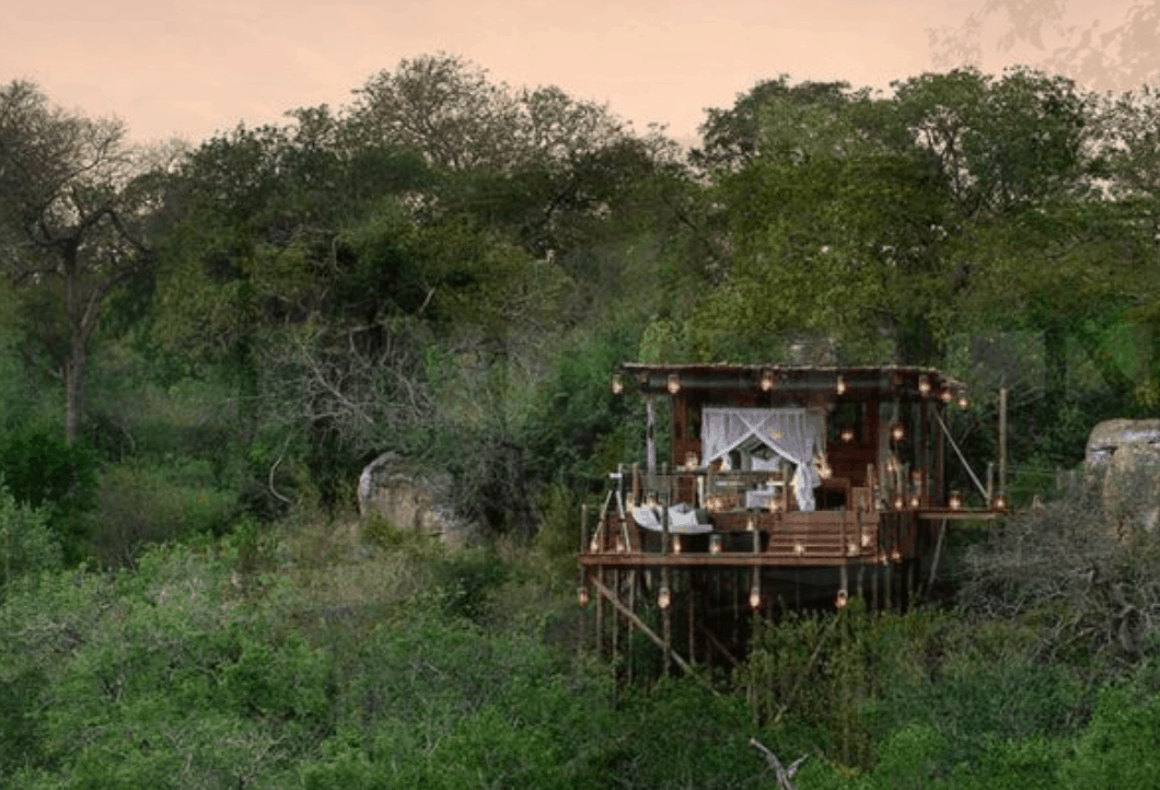 romantic treehouse hotel south africa